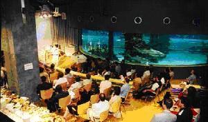 Tengeri Akvarisztikai Konferencia a Tropicáriumban